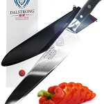 DALSTRONG-Chef-Knife-Shogun-Series-Gyuto-VG10-95-240mm-0