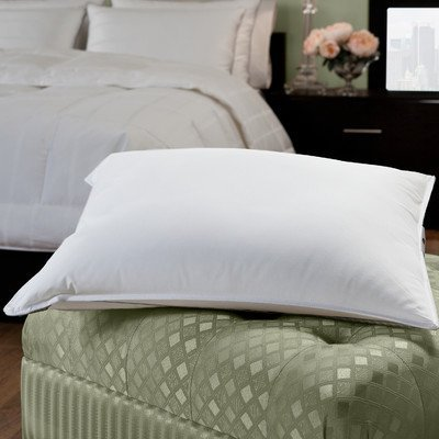 Down-Lite-Primaloft-Pillow-0-1