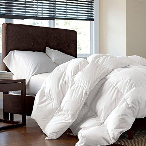LUXURIOUS-Siberian-GOOSE-DOWN-Comforter-1200-Thread-Count-100-Egyptian-Cotton-750FP-50oz-1200TC-White-Solid-0