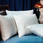 Pacific-Coast-Touch-of-Down-Standard-Pillow-Set-2-Standard-Pillows-0
