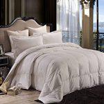 Pure-Element-Dream-Island-Down-Alternative-All-Season-Comforter-0