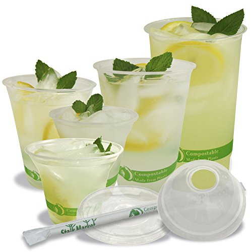 Stalkmarket-100-Compostable-PLA-Clear-Cold-Cup-1000-Count-Case-0-0