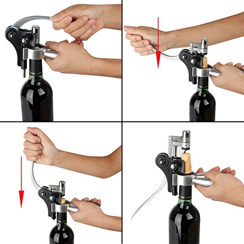 Wine-Opener-Kit-Gift-Set-9-Piece-Includes-Stainless-Steel-Wine-Opener-Corkscrews-Thermometer-Wine-Aerator-Stoppers-Drip-Ring-Foil-Cutter-Wine-Accessories-0-1