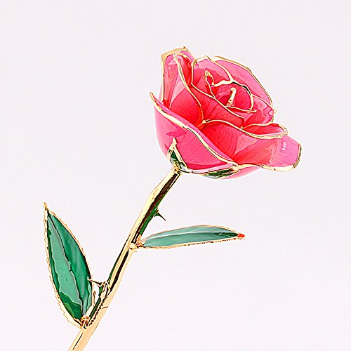 24-Carat-Gold-Dipped-Pink-Real-Rose-Flower-Gifts-for-Women-Best-Gift-for-Valentines-Day-Mothers-Day-Anniversary-Birthday-or-Christmas-0-0