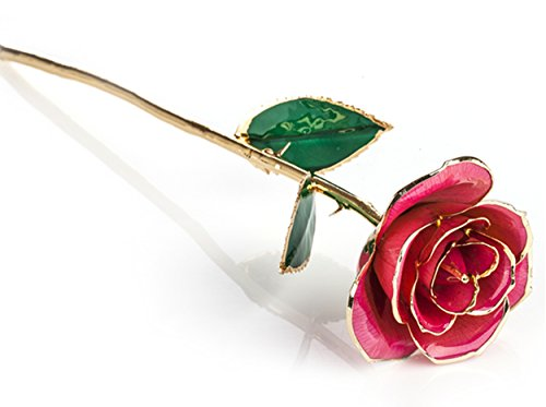 24-Carat-Gold-Dipped-Pink-Real-Rose-Flower-Gifts-for-Women-Best-Gift-for-Valentines-Day-Mothers-Day-Anniversary-Birthday-or-Christmas-0-1