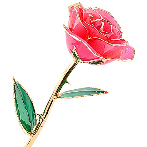24-Carat-Gold-Dipped-Pink-Real-Rose-Flower-Gifts-for-Women-Best-Gift-for-Valentines-Day-Mothers-Day-Anniversary-Birthday-or-Christmas-0