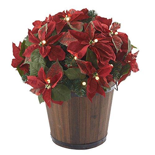 24-Cordless-Pre-Lit-LED-Poinsettia-Pot-Filler-0