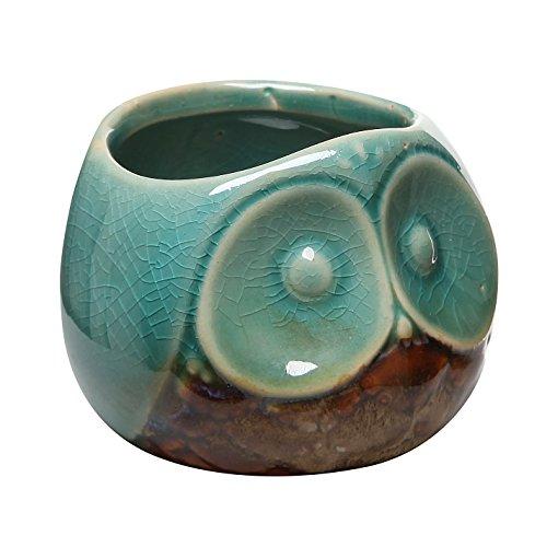 3-Turquoise-Brown-Small-Owl-Design-Ceramic-Succulent-Planter-Flower-Bud-Pot-Mini-Decorative-Vase-0
