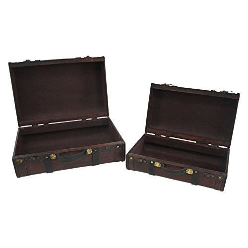 Aspire-Home-Accents-Rothschild-Suitcase-Trunks-Set-of-2-0-0