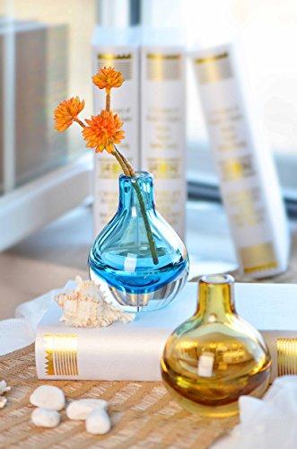 CASAMOTION-Hand-Blown-Art-Glass-Bud-Vase-Gift-Boxed-0-1