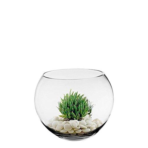 CYS-Glass-Bubble-Bowl-Fish-Bowl-Hand-Blown-Glass-Body-D-6-0-0