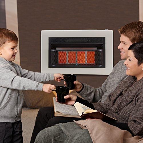 Cedar-Ridge-Recon-Dual-Fuel-Vent-Free-Infrared-Heater-4-Plaque-Model-MD4TPU-0