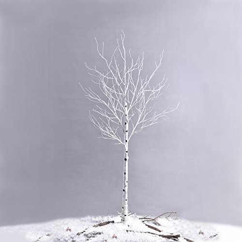 Ecolinear-Prelit-Birch-Tree-48-LEDs-96-LEDs-Silver-Twig-Warm-White-Light-White-Branches-Home-Festival-Party-Christmas-Indoor-and-Outdoor-Use-0-1