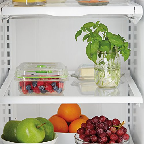 FoodSaver-Vacuum-Sealed-Fresh-Container-CrackShatterOdorStain-Resistant-BPA-Free-0-1
