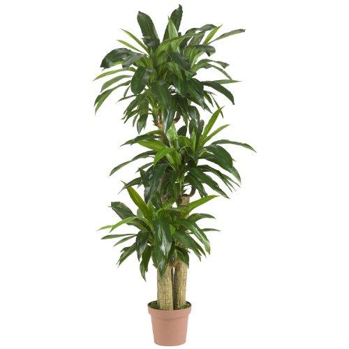 Nearly-Natural-6584-Corn-Stalk-Dracaena-Decorative-Artificial-Silk-Plant-Green-0