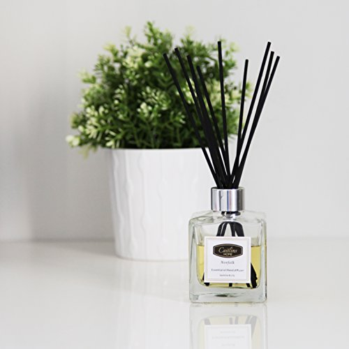 Reed-Diffuser-Essential-Oil-Jasmine-Lily-Scent-Natural-Reed-Sticks-44floz-125ml-Caitlins-Home-0-0