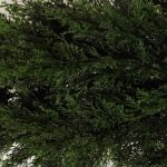 Two-4-Foot-Artificial-Topiary-Cedar-Trees-Potted-Indoor-Outdoor-Plants-0-0