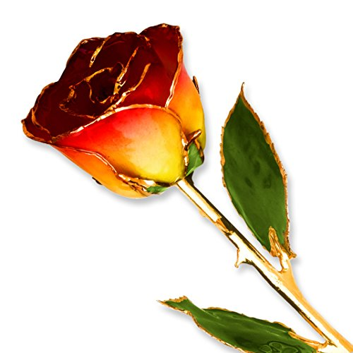 Yellow-Red-Long-Stem-Dipped-24K-Gold-Trim-Genuine-Rose-in-Gold-Gift-Box-0
