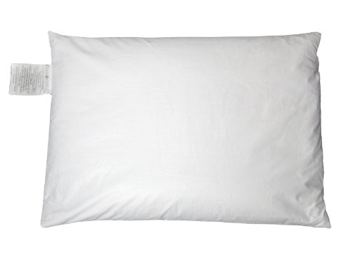 Zen-Chi-Organic-Queen-Buckwheat-Pillow-with-Cotton-Cover-0-0