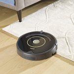 iRobot-Roomba-650-Vacuum-Cleaning-Robot-Bundle-with-Replenishment-Kit-0-0